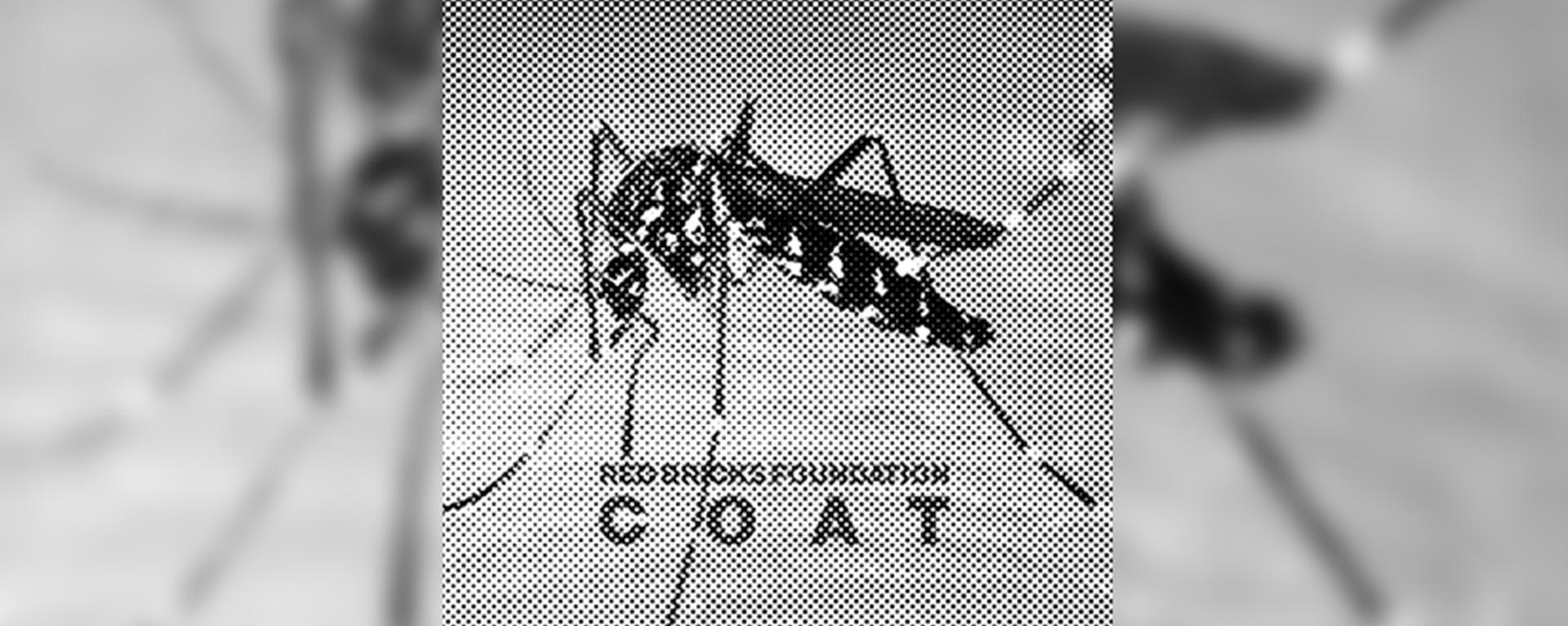 I Red Bricks Foundation firmano la colonna sonora della nuova campagna di Paciotti